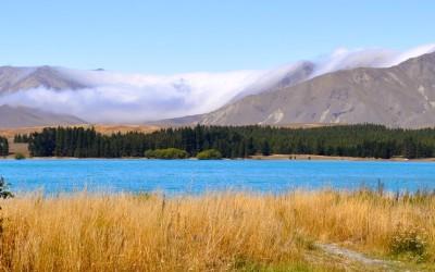 Neuseeland 2014 – Mission Fliegenfischen lernen