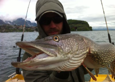 Hecht Thunersee Highland Fishing