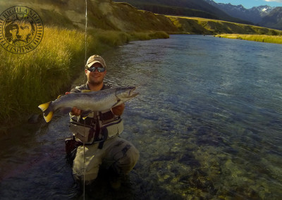 Bachforelle Neuseeland, Highland Fishing