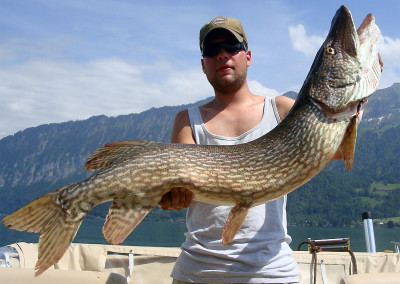 Hecht Thunersee, Highland Fishing