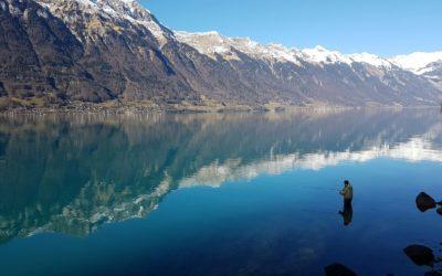 Meine Gedanken zur Gegenwart und Zukunft unserer Gewässer