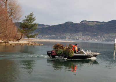 Eglibaumprojekt Thunersee, Highland Fishing