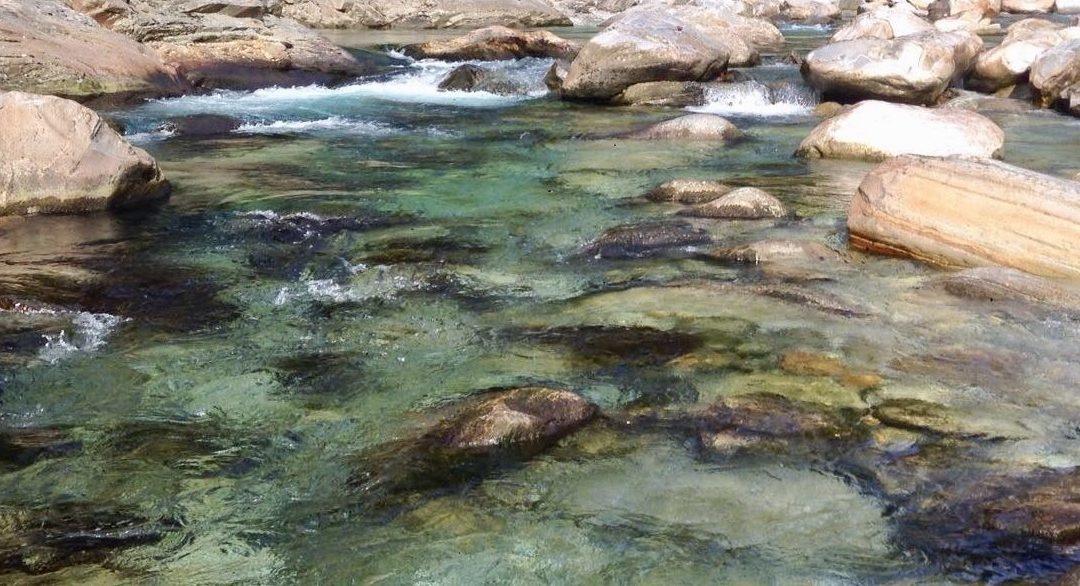 Tatort Bach – Fischgerechte Revitalisierungen und Optimierungen